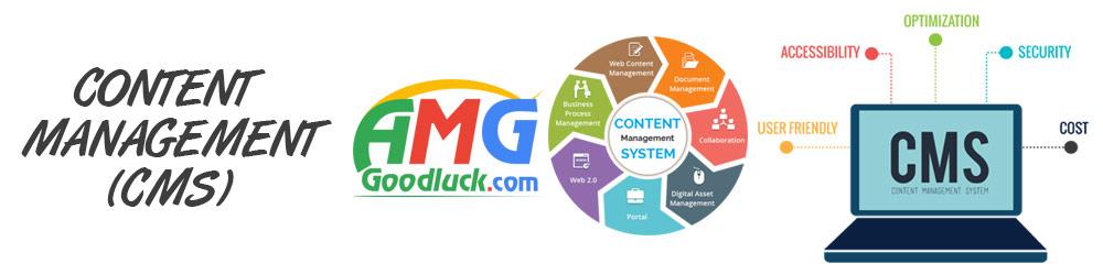Content Management(CMS)